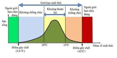 Hình 1: Sơ đồ tổng quát mô tả giới hạn sinh thái của sinh vật