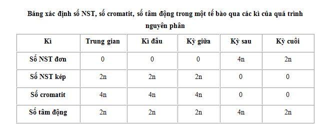 Tính số NST trong nguyên phân