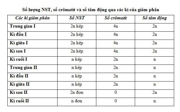 Số NST các kì giảm phân