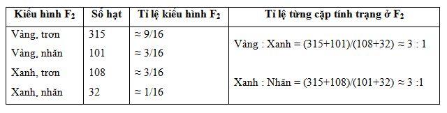 phân tích kết quả lai hai cặp tính trạng của menden