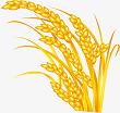 Tập làm văn: Nghe kể: Kéo cây lúa lên. Nói về thành thị, nông thôn