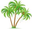 Chính tả: Cây dừa