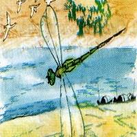 Tập đọc: Con chuồn chuồn nước