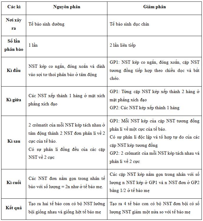 So sánh nguyên phân, giảm phân