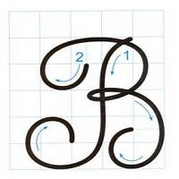 Bài 5: Viết: Chữ hoa B